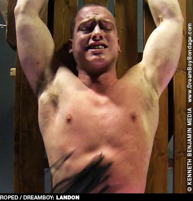 Landon American Gay Porn Star 131799 gayporn star