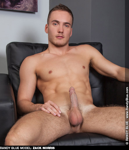 Zack Norris Rock Hard Blond Randy Blue Gay Porn Star 131817 gayporn star