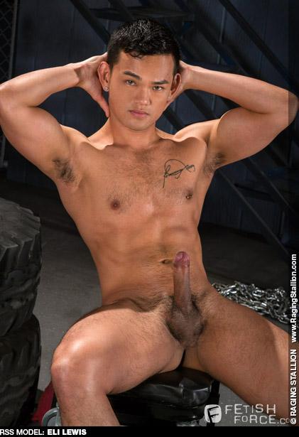 Eli Lewis Sexy Pocket Gaysian American Gay Porn Star 131831 gayporn star