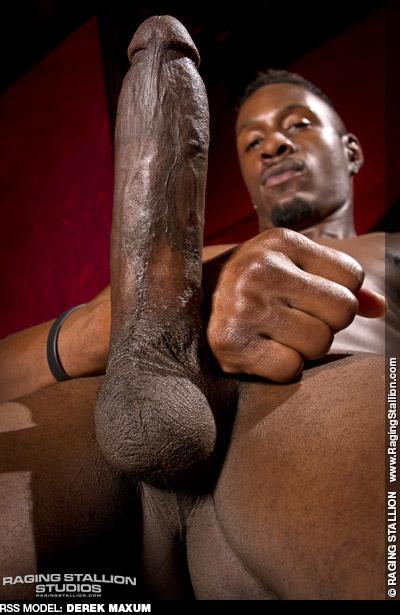 Derek Maxum Handsome Hung Black American Gay Porn Star Gay Porn 132531 gayporn star