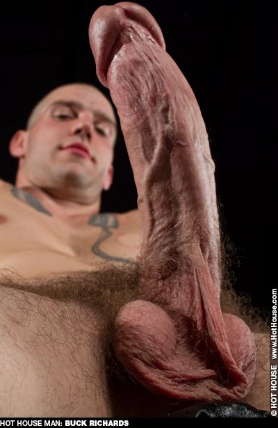 Buck Richards American Gay Amateur Porn Star Gay Porn 132751 gayporn star