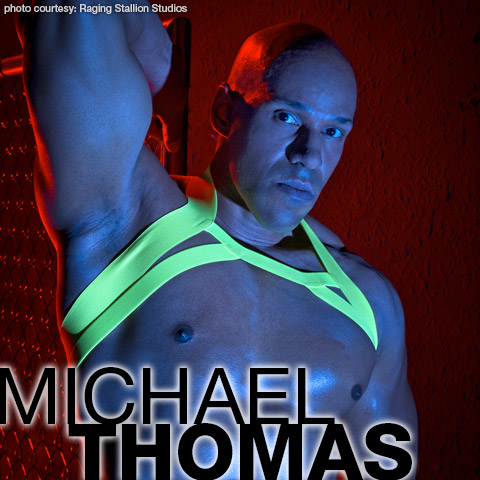 Michael Thomas Big Muscle Horse Hung Black American Gay Porn Star Gay Porn 132985 gayporn star