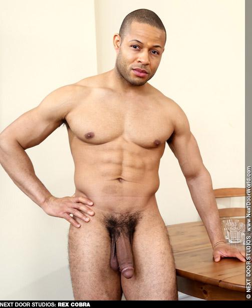 Rex Cobra Hung Handsome Black American Gay Porn Star Gay Porn 133071 gayporn star