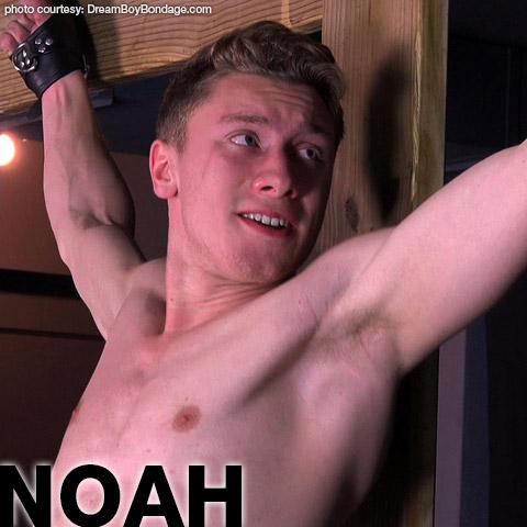 Noah Young Blond American Gay Porn Guy Gay Porn 133618 gayporn star