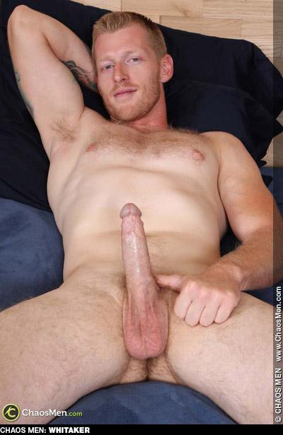 Whitaker ChaosMen Amateur Gay Porn Guy Bareback 133661 gayporn star