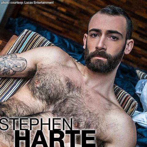 Stephen Harte Hairy American Gay Porn Dude Gay Porn 133710 gayporn star amateur Scruffy Otter
