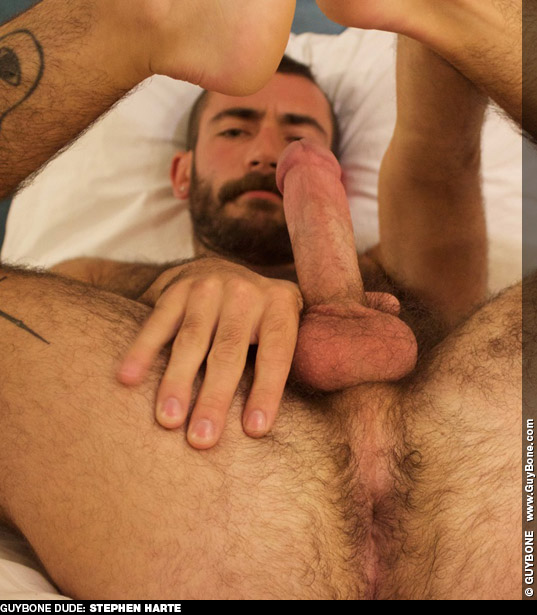 Stephen Harte Hairy American Gay Porn Dude Gay Porn 133710 gayporn star