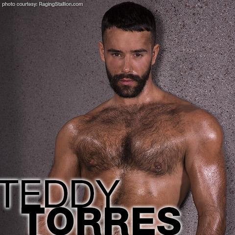 Teddy Torres Canadian Hairy Hunk Gay Porn Star Gay Porn 134603 gayporn star