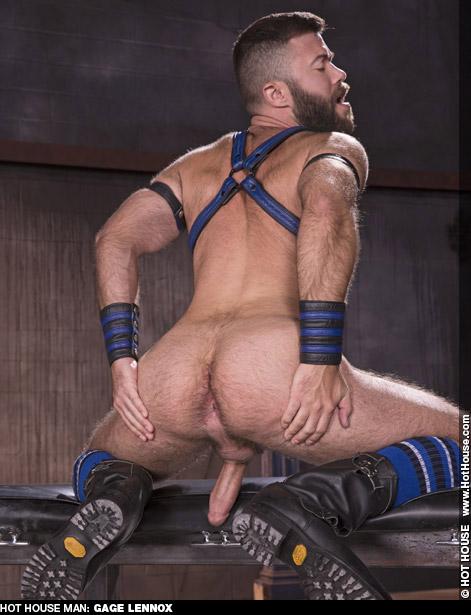 Gage Lennox American Gay Porn Star Gay Porn 134644 gayporn star