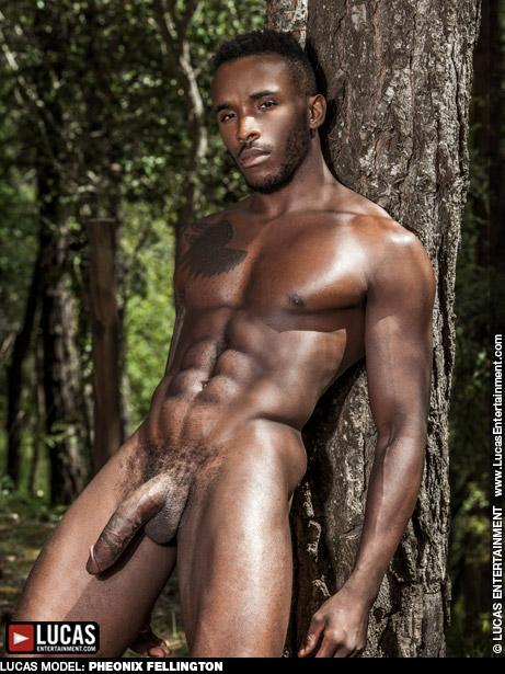 porn starphoenix gay Black