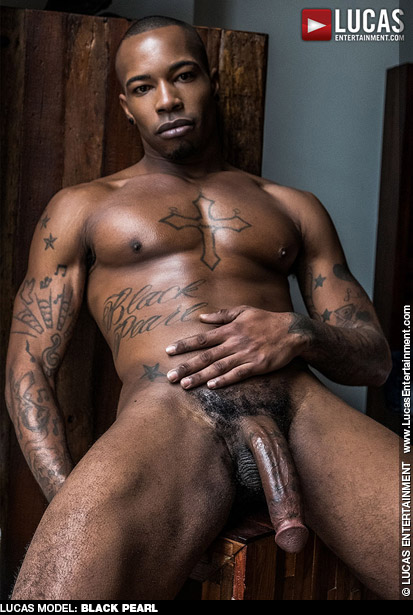 Black Pearl Handsome Hung Black Lucas Entertainment Gay Porn Star Gay Porn 134964 gayporn star