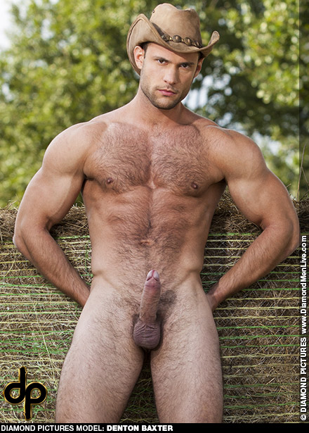 Denton Baxter Handsome Hungarian Gay Porn Web Cam Star Gay Porn 134980 gayporn star