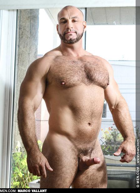 Marco Vallant Big Hairy Hunk Gay Porn Star Gay Porn 135003 gayporn star