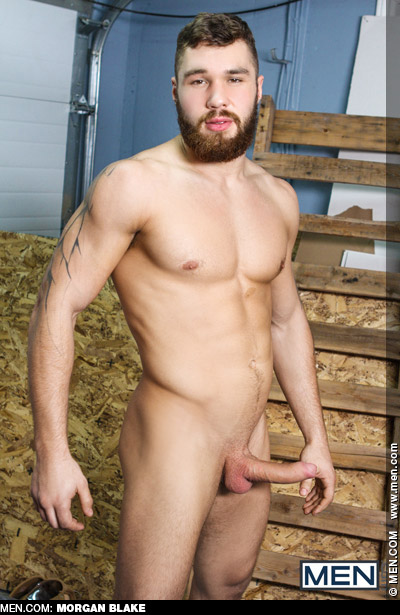 Morgan Blake Hunk Canadian Muscle Gay Porn Star Gay Porn 135198 gayporn star