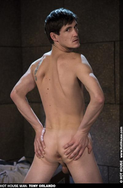 Tony Orlando American Gay Porn Star Gay Porn 135251 gayporn star