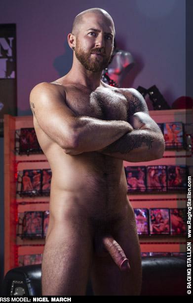 Nigel March Hairy American Gay Porn Star Gay Porn 135385 gayporn star